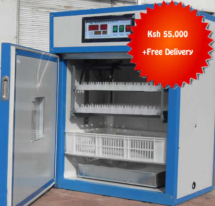 264 Chicken Eggs incubator