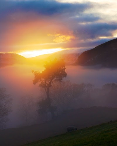 Mist over Loch tay by Photographic View Scotland