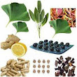Synthetic alternative of Herbal Extracts are useful and important- Thiocolchicoside one of them