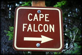 Cape Falcon - Oswald West State Park