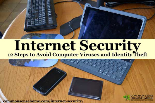 Internet Security - 12 Steps to Avoid Computer Viruses and Identity Theft