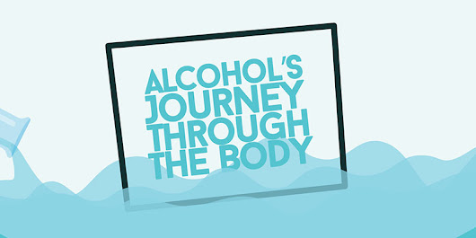 The Effects of Alcohol on the Body Full-Page Infographic