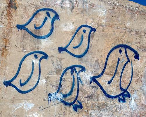 Birds by dcclark