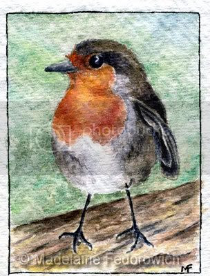 Red Robin ACEO
