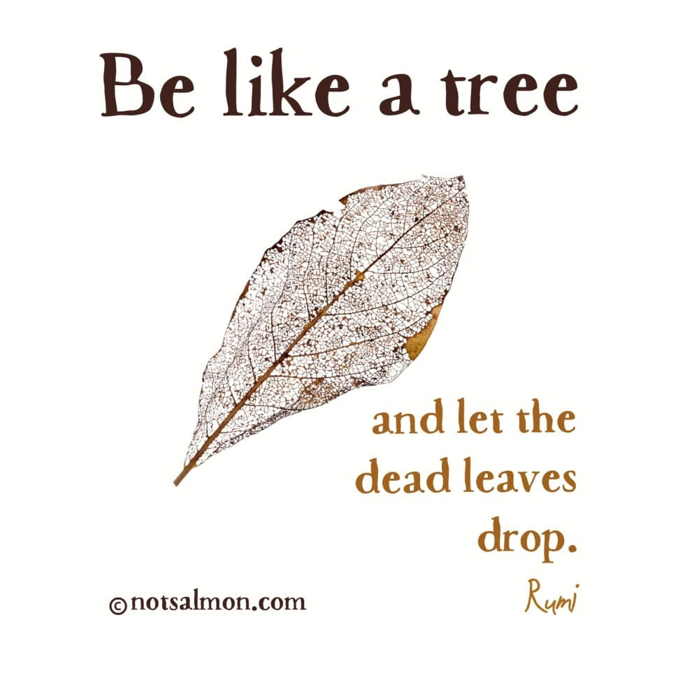 10 Tree Of Life Love Quote Thousands Of Inspiration Quotes About