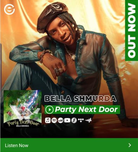 "[Lyric Video] Bella Shmurda – ""Party Next Door LYRICS"""