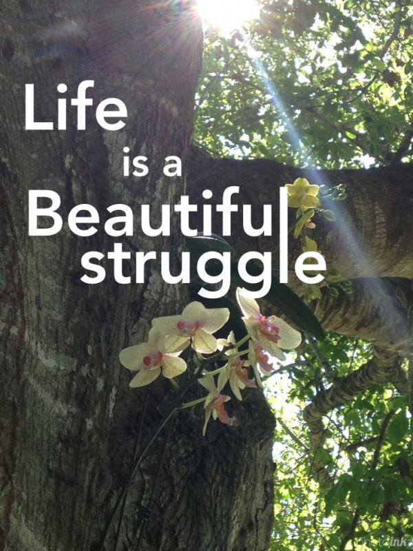 Life Is A Beautiful Struggle Quote Quote Number 593418 Picture