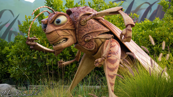 Disneyland Resort, Disney California Adventure, it's tough to be a bug