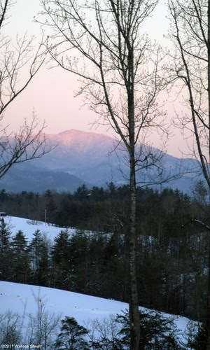 Snow 1-2011