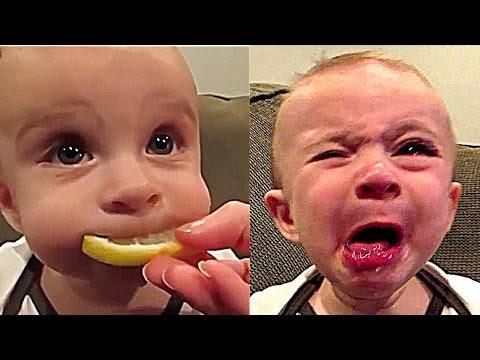 FUNNY BABIES LOL