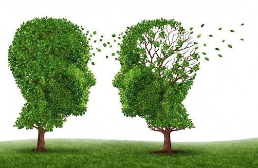 How To Properly Plan for Alzheimer's Care | Naturopath Perth