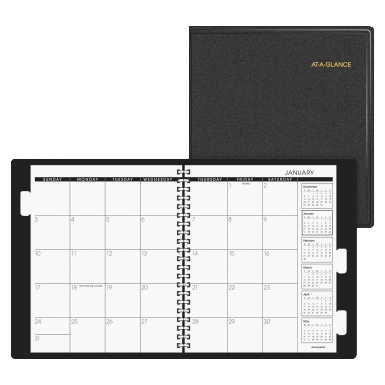 At-A-Glance Professional Long Range Planner with Tabbed Dividers ...