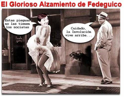 fediguicoinvolucion