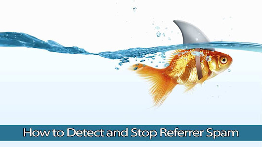 How to Detect and Stop Referrer Spam