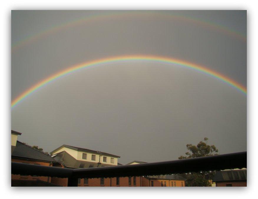 rainbow 800
