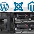 Consider Managed WordPress Hosting Services for Effective Business
