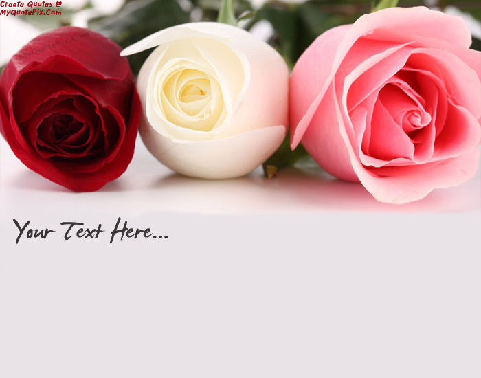 Write Quote On Beautiful Roses Pink White Red Picture