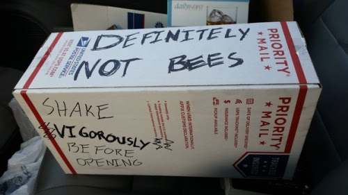 Well at least its not bees