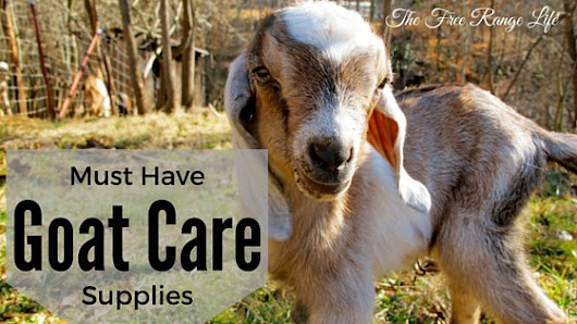 Must-Have Goat Care Supplies - The Free Range Life