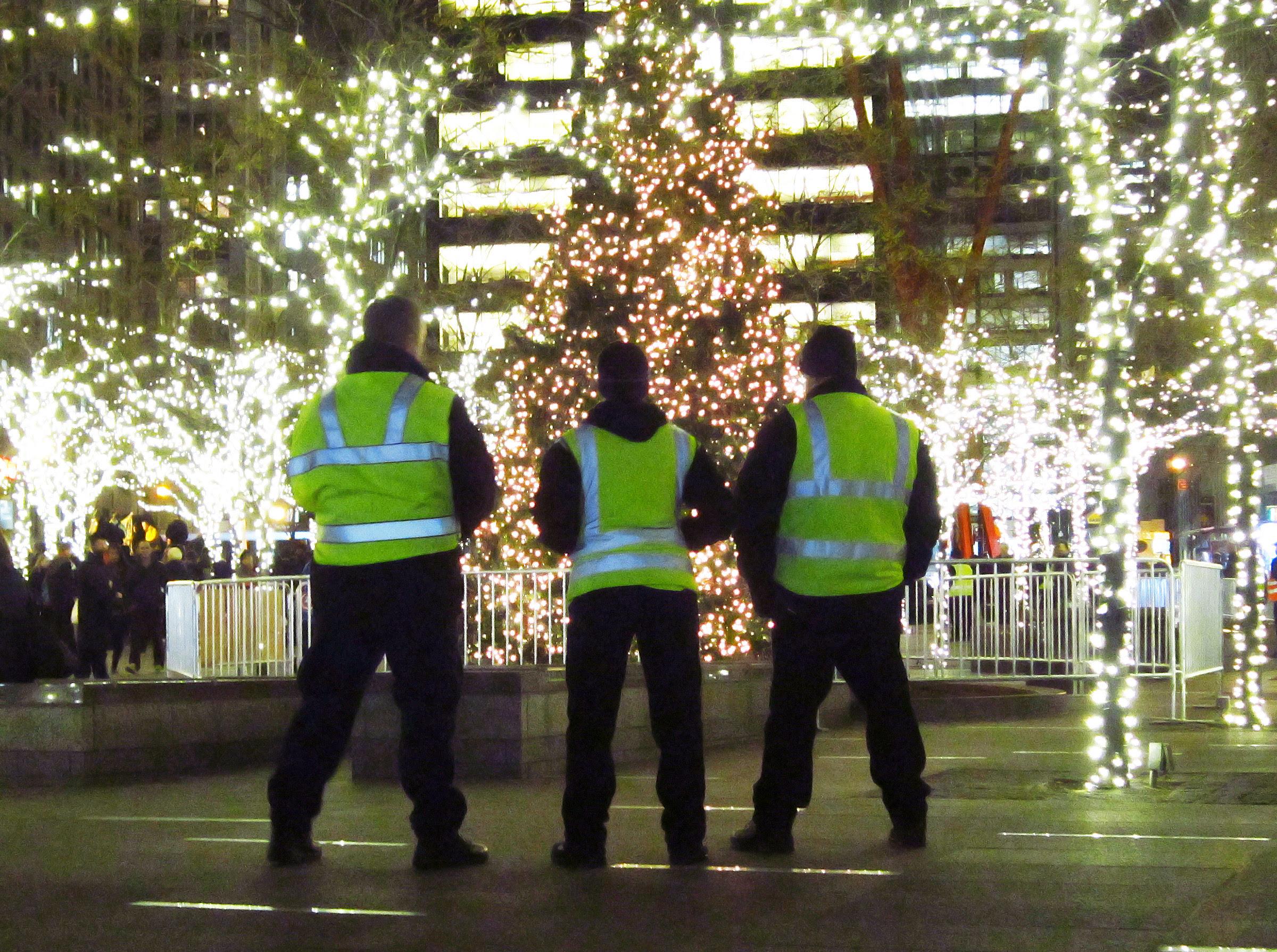 Guarding the Christmas tree
