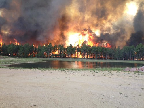 Flames overtake much of the Black Forest community near Colorado Springs, Colo. The Black Forest Fire has already surpassed last year's Waldo Canyon Fire as the most destructive fire in the state's history. (Photo courtesy Inciweb.org)