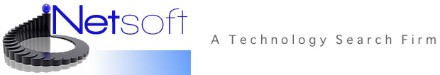 Netsoft - A Technology Search Firm