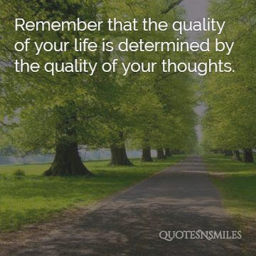 Quality Of Life Quotes Life Quotes