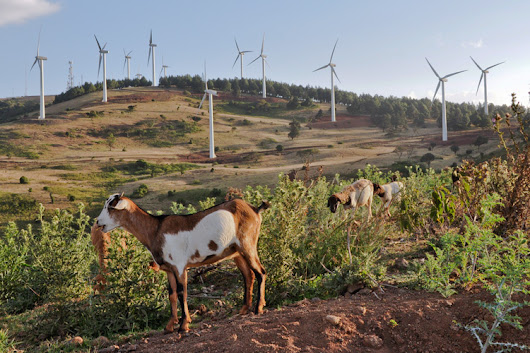 Renewable energy has robust future in much of Africa