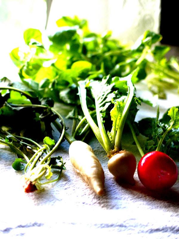 seven herbs/nanakusa