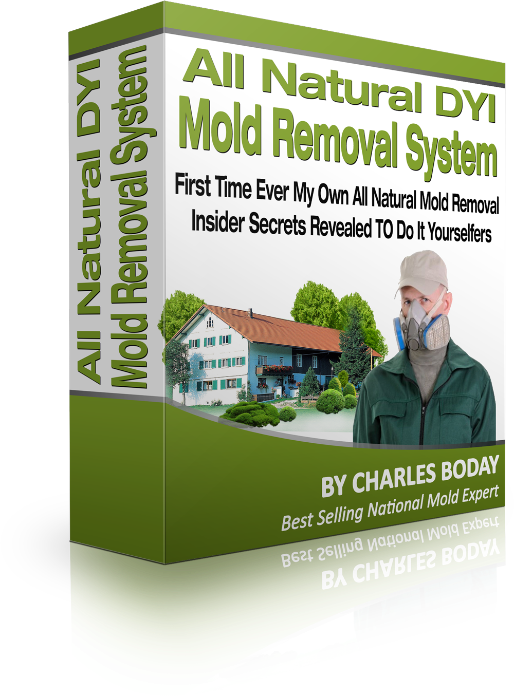 Mold_Removal2%20%282%29
