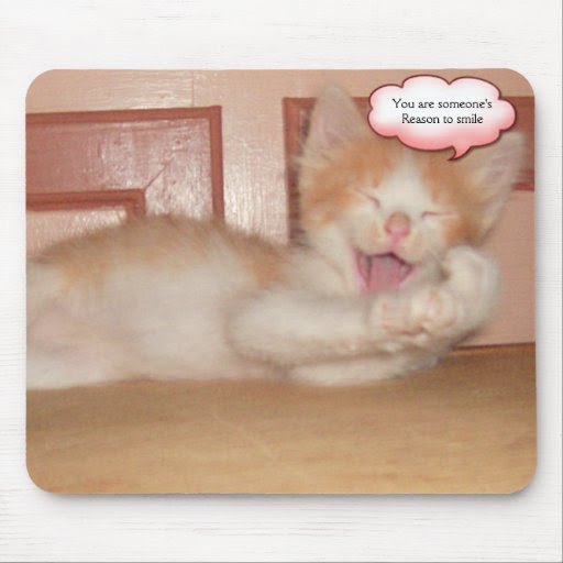 Meow Cats 7 Mouse Pad