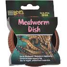 Lee's Plastic Mealworm Dish - 1 Count