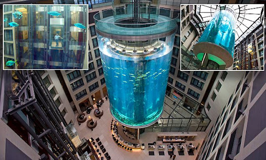 Inside the incredible 82ft hotel fish tank which has a lift INSIDE it