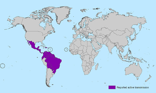 Peru Free of Zika Virus. Government Taking Measures