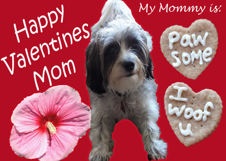 Love You Mom Happy Valentines Day To My Daughter Quotes Difficult