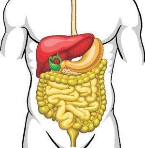 100 de                                                           alimente                                                           miraculoase                                                           pentru                                                           organism,                                                           Pentru ficat