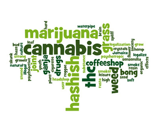 Medical Marijuana Facts: 10 Things You Oughta Know! | My MMJ