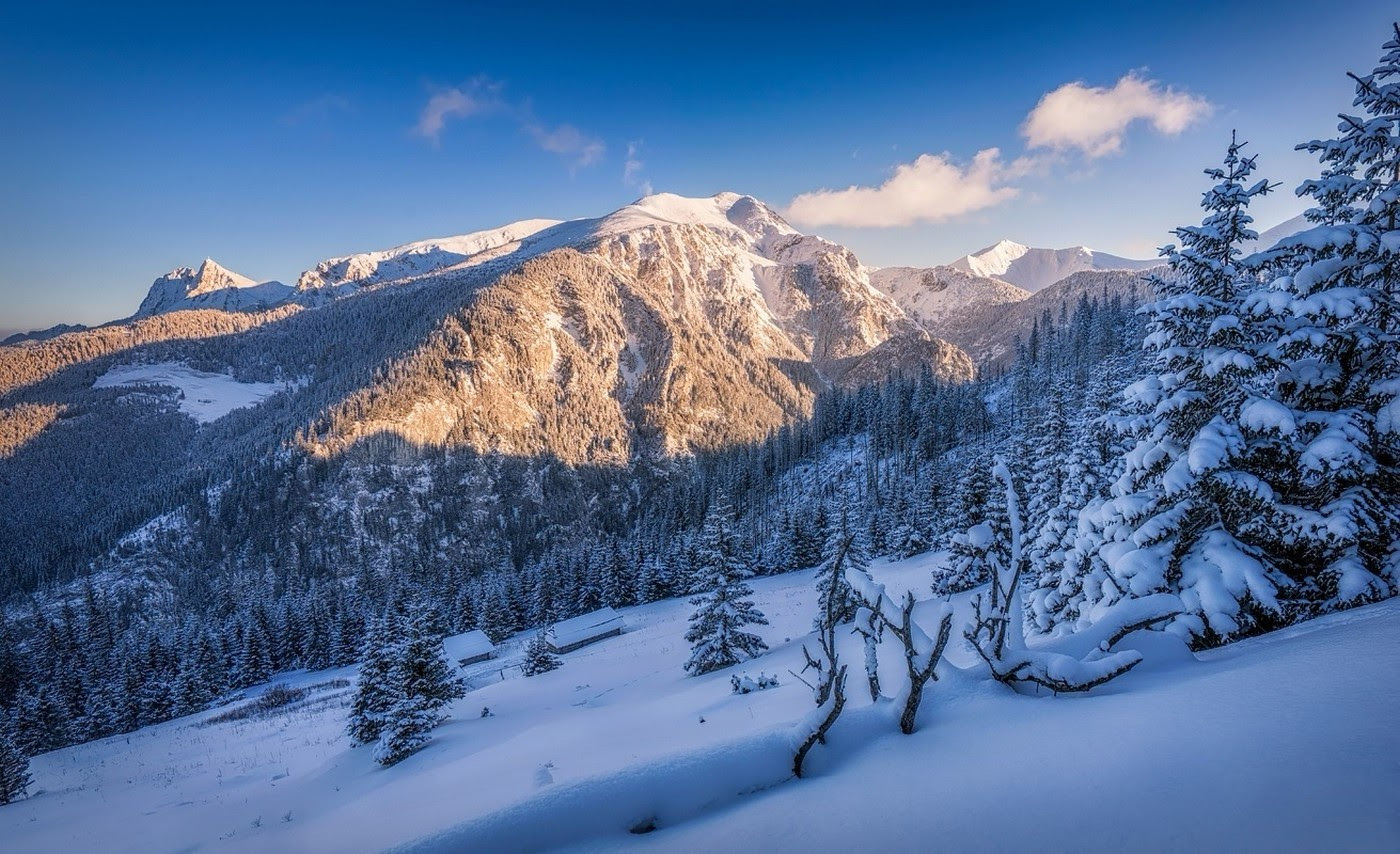 nature landscape winter snow mountain forest sunset trees poland