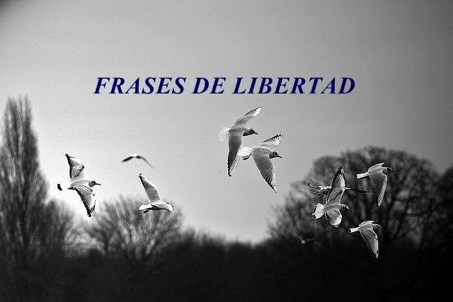 Frases De Libertad 635 Frases