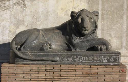 9-Egyptian Lion