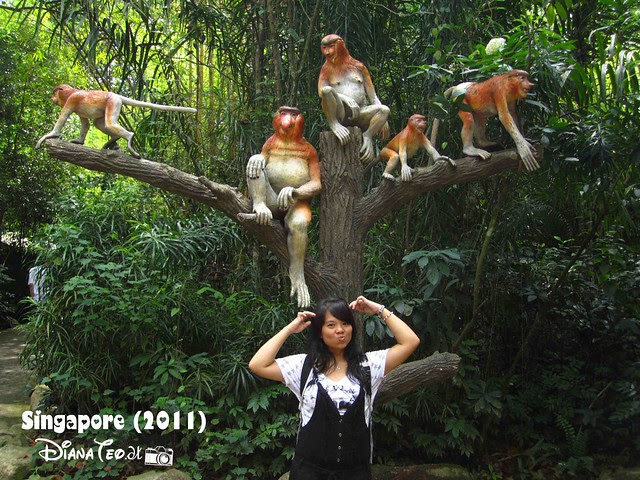 Day 3 Singapore - Zoo Singapore 04