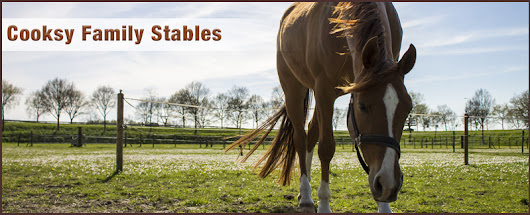 Cooksy Family Stables provides horse boarding services in San Jose, CA