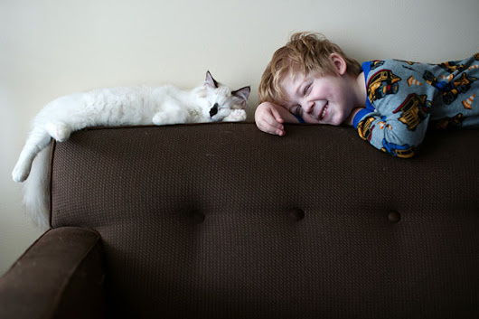 Photographer Captures Bond Between Her Boys and Their Cats