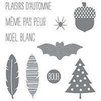 Du bonheur à l'année Photopolymer Stamp Set (French) by Stampin' Up!