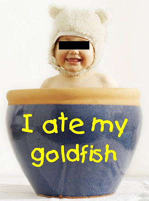 I ate my goldfish