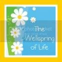 The Wellspring of Life