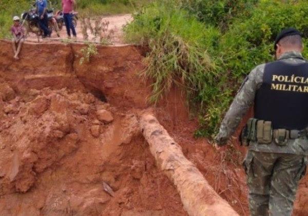 Foto: Polícia Ambiental de Rondônia