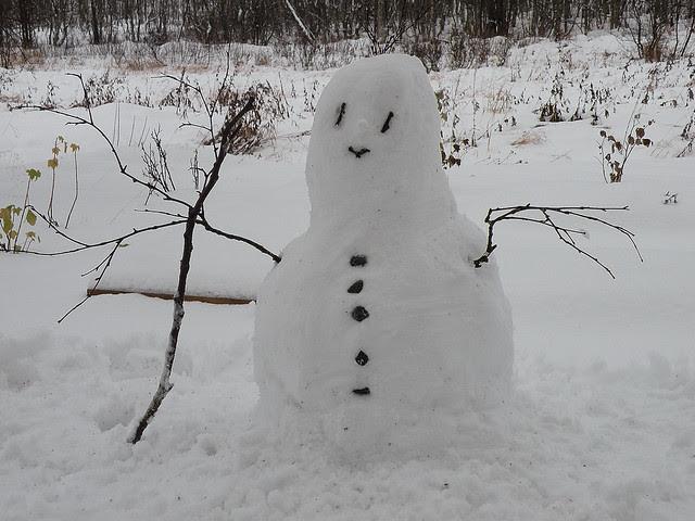Winter's first snowman