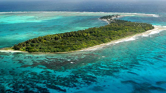 Half Moon Caye National Monument: This is Birding & Diving Heaven