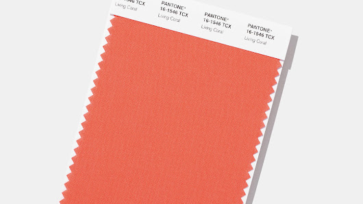 Pantone announces 2019 color of the year and it's basically 'a big hug'